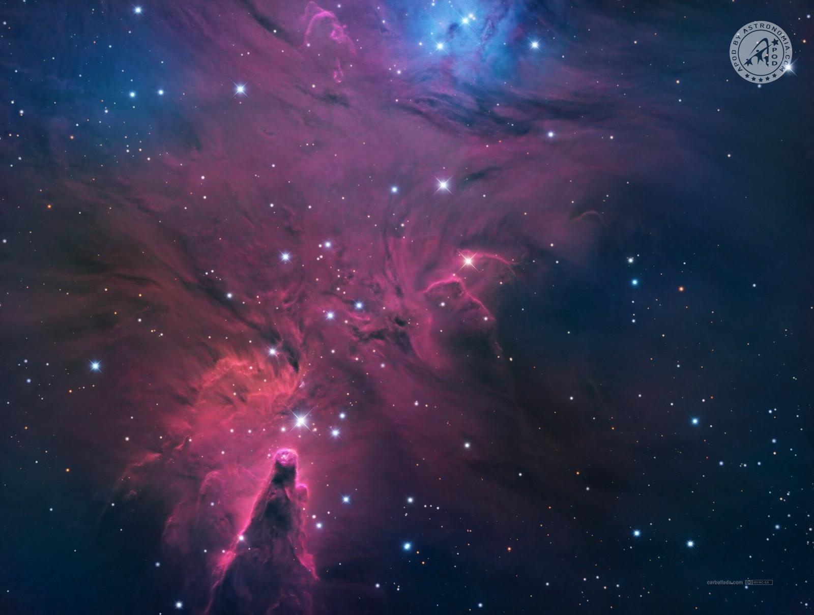 Nebulosa Cono – NGC 2264