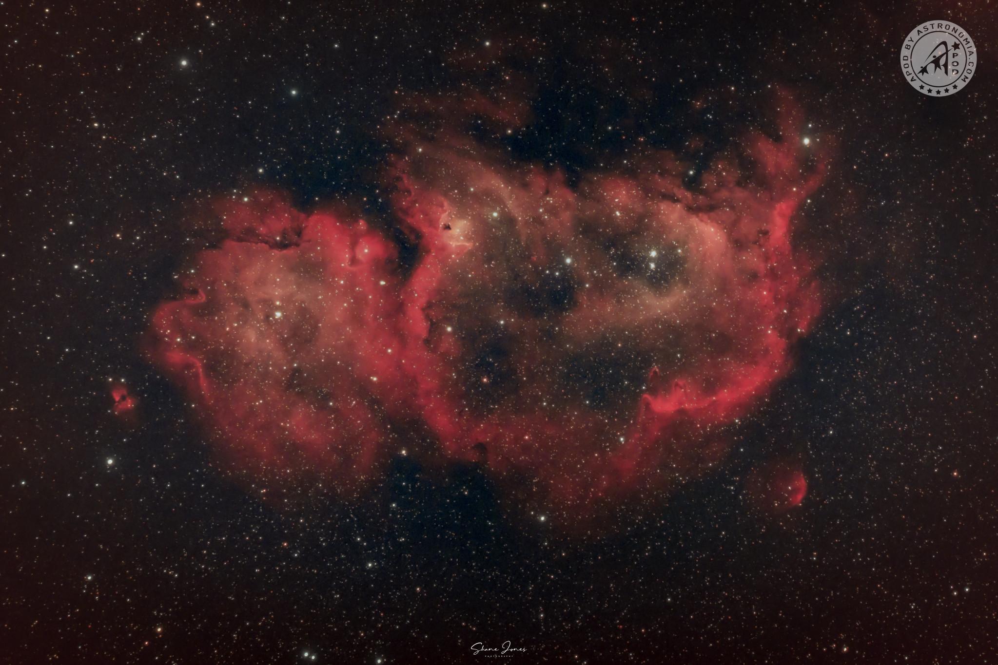La Nebulosa Anima