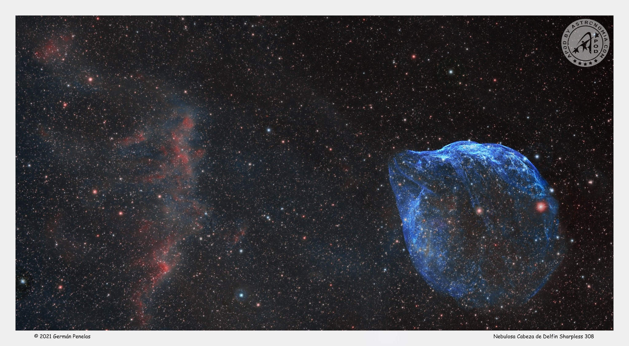 Nebulosa Delfino
