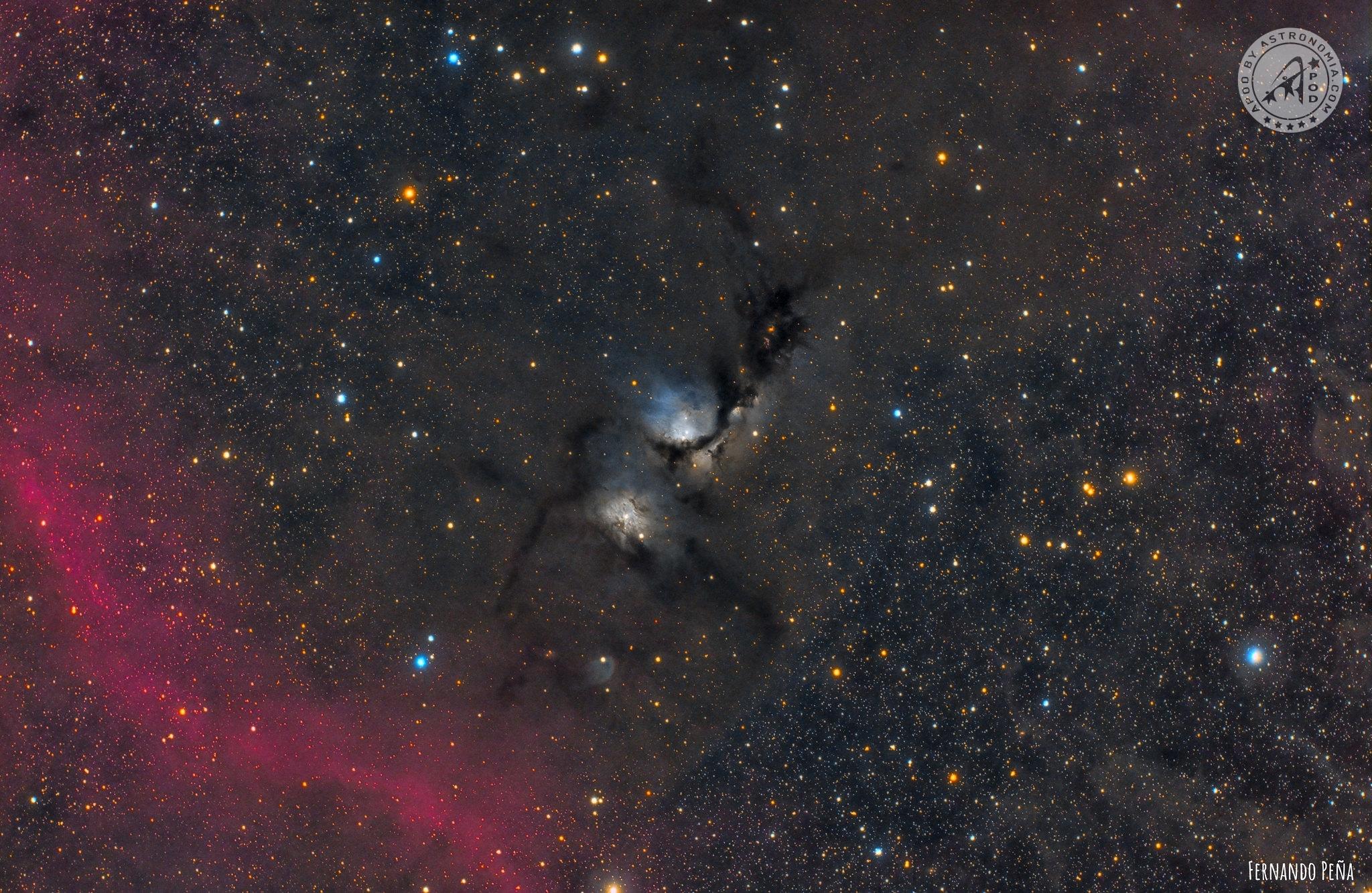 La Nebulosa diffusa M78