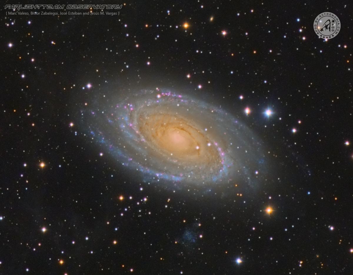 Galassia di Bode M81