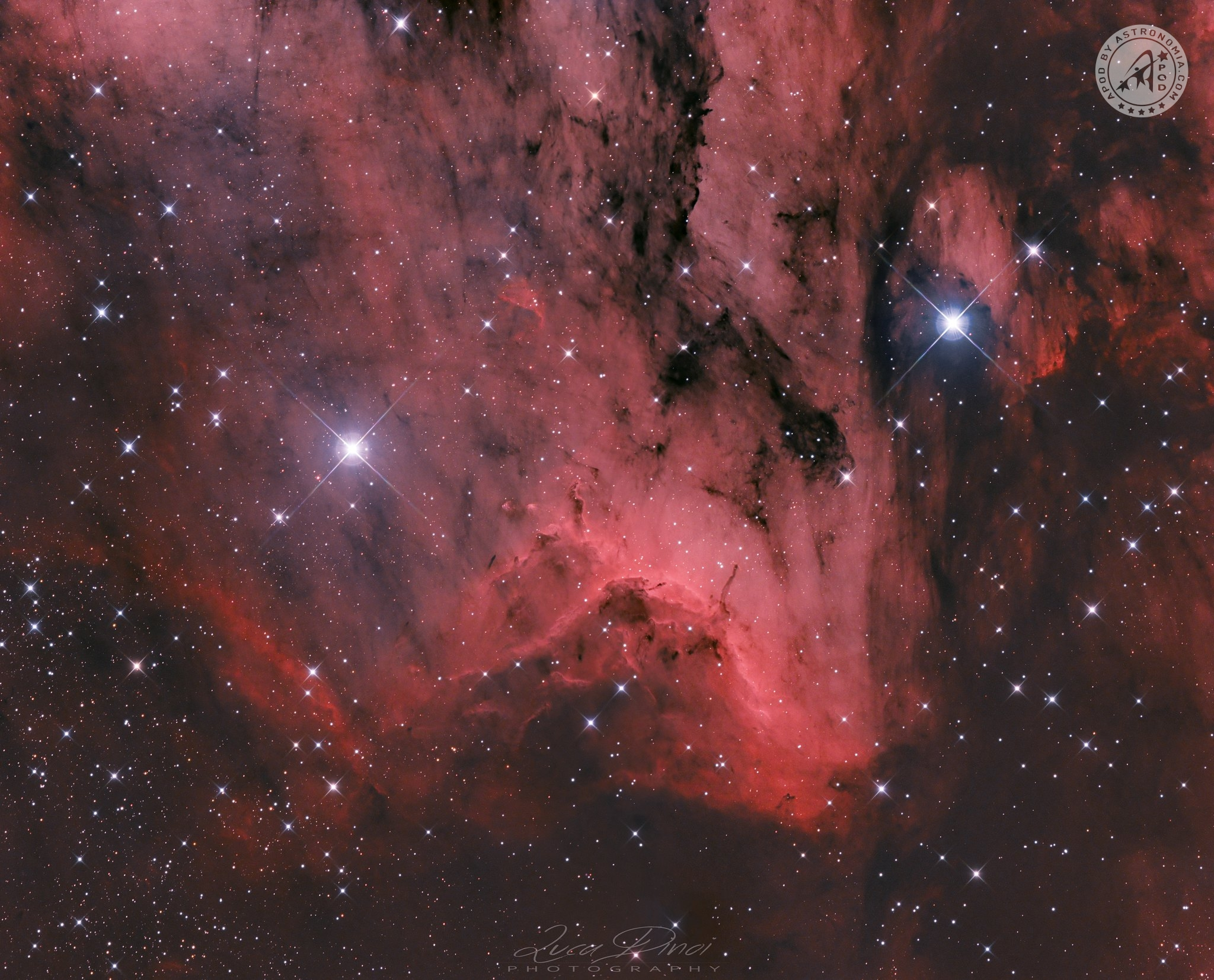 Nebulosa del Pellicano