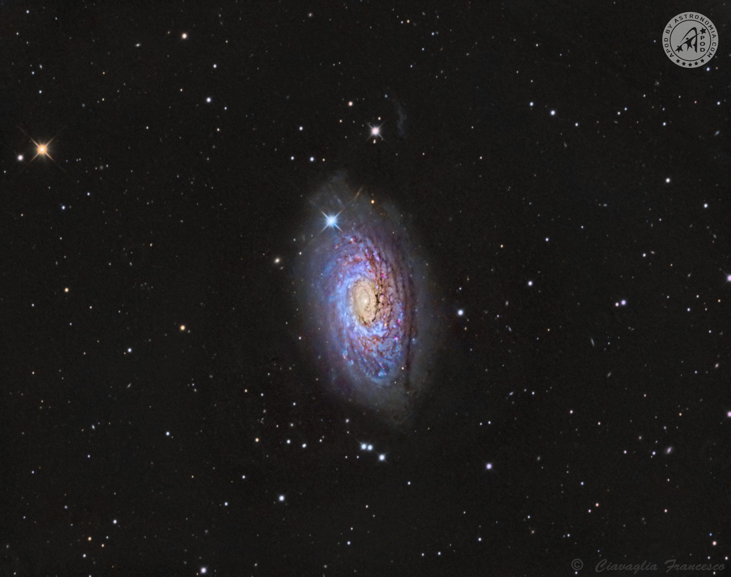 Galassia Girasole M63
